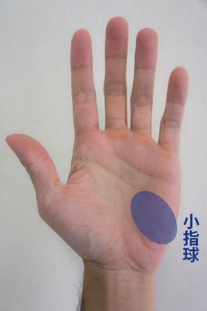 小指球の画像