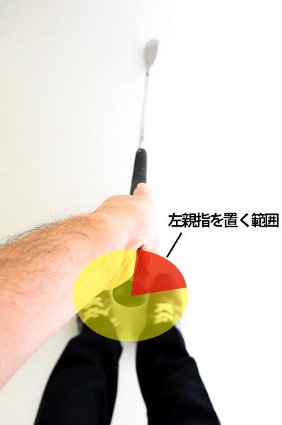 左親指を置く範囲の画像
