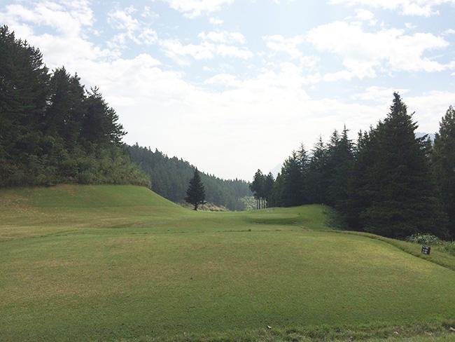 ヴィレッジ東軽井沢ゴルフクラブ14番ホールの画像