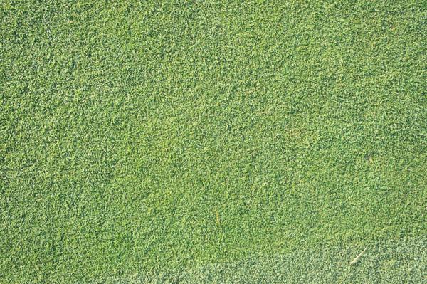 関越ハイランドゴルフクラブのグリーンの画像