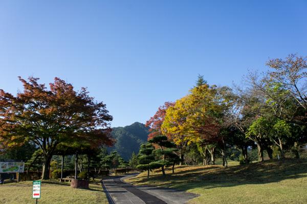 関越ハイランドゴルフクラブの紅葉の画像