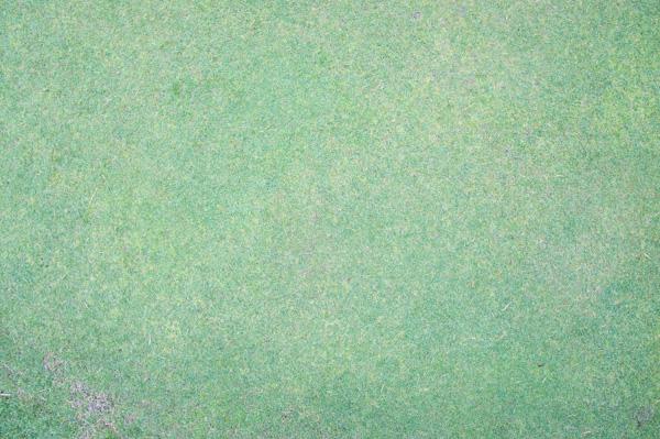 高崎KGカントリークラブのグリーンの画像