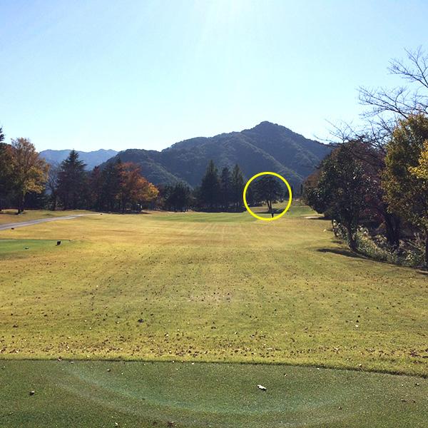 関越ハイランドゴルフクラブのケヤキ1番ホールの画像