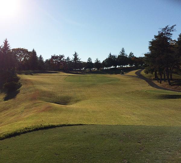 関越ハイランドゴルフクラブのケヤキ7番ホールの画像