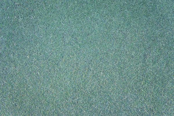 富岡カントリークラブの練習グリーンの画像