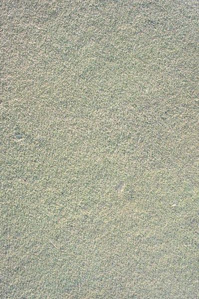 レイクウッドゴルフクラブ富岡コースのグリーンの画像