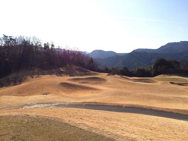21センチュリークラブ富岡ゴルフコース8番ホールの画像