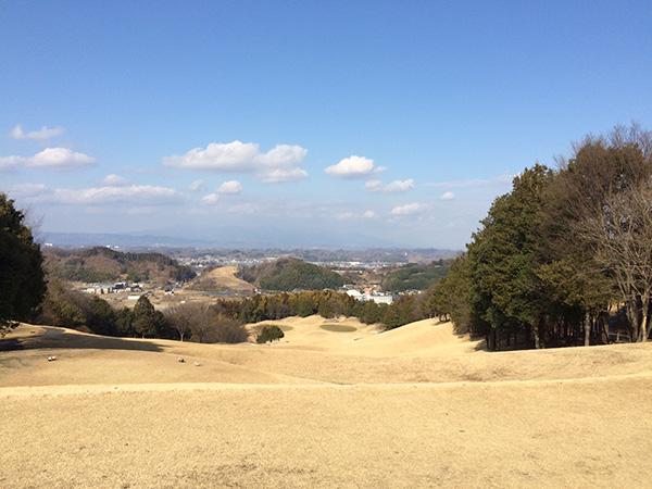 21センチュリークラブ富岡ゴルフコース15番ホールの画像