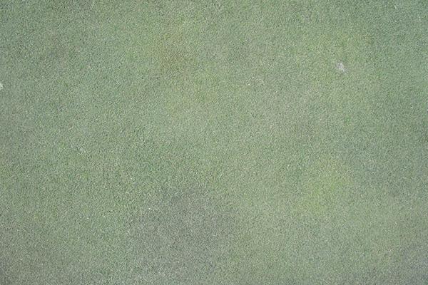 梅ノ郷ゴルフ倶楽部のグリーンの画像