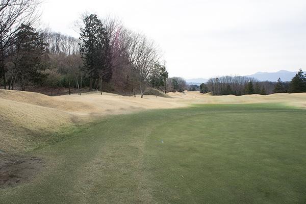 梅ノ郷ゴルフ倶楽部のコースの画像