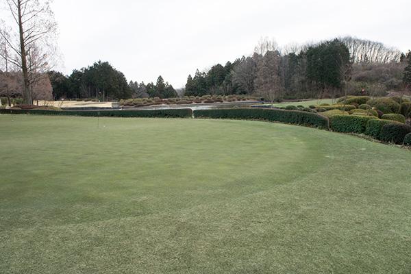 梅ノ郷ゴルフ倶楽部の練習グリーンの画像