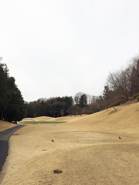 梅ノ郷ゴルフ倶楽部6番ホールの画像