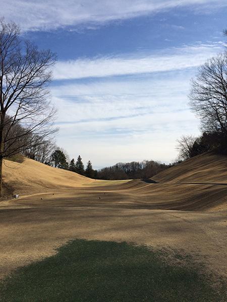 梅ノ郷ゴルフ倶楽部12番ホールの画像
