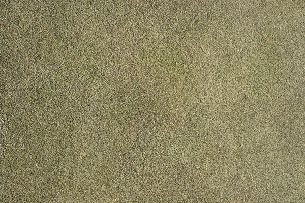 榛名の森カントリークラブのグリーンの画像